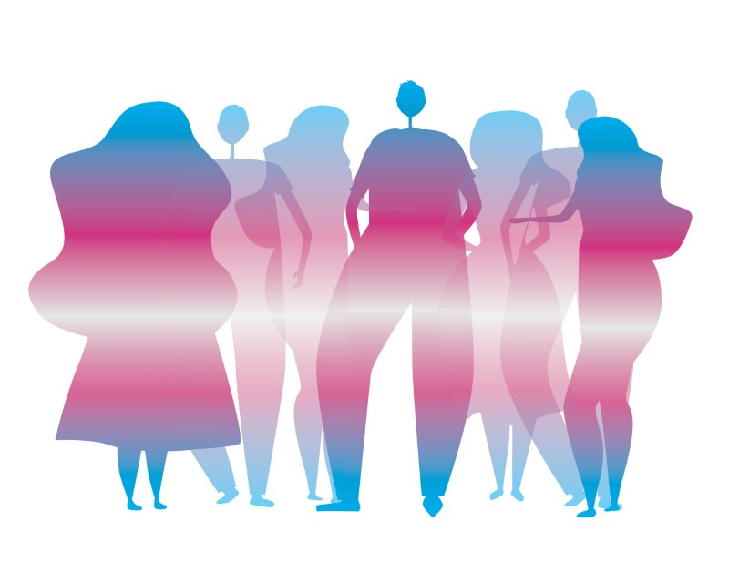 illustration of people's shadows in trans pride colors