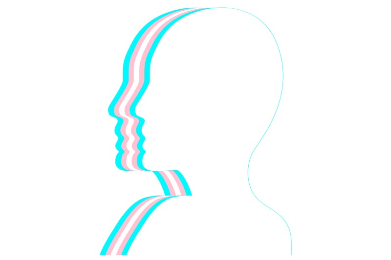 line drawing of person in side profile with trans flag colours